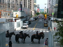 TORONTO - JUNE 23, 2010 - Police officers marching on the streets on horses during G20 Protest in Toronto, Ontario, Canada. Stock Photography