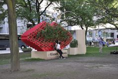 Toronto, 24 Juni: Het Beeldhouwwerk van kussenbijen van Nathan Phillips Square van Toronto in de Provincie Canada van Ontario Stock Afbeelding