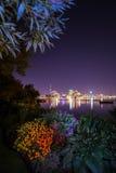 Toronto Kanada sikt från min trädgård Fotografering för Bildbyråer