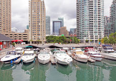 Toronto Marina. Marina with boats and high risers skyline at Harbourfront, Toronto Canada royalty free stock images