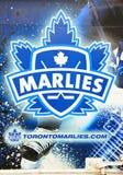 Toronto Marlies Royalty Free Stock Photos