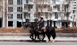 Toronto Mounted Police on horses in Toronto, Canada. Toronto, Ontario, Canada - April.9.2017: Toronto Mounted Police on horses in Toronto , Ontario, Canada Stock Photo