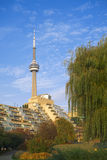 Toronto Music Garden & CN Tower. Toronto Music Garden, CN Tower in the background at Lakeshore stock photography
