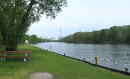 Toronto panorama. Wide-angle view of Downtown Area of Toronto, Canada on from the Toronto Islands royalty free stock image