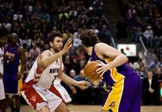 Toronto Rapters contro Los Angeles Lakers Fotografia Stock Libera da Diritti