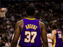 Toronto Rapters gegen Los Angeles Lakers lizenzfreies stockfoto