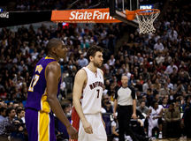 Toronto Rapters vs. Los Angeles Lakers Stock Photography