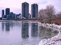 Toronto sjösikt av den vinterHumber fjärden 2018 arkivbild