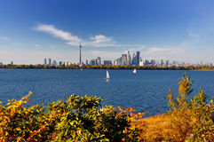 Free Toronto Skyline Stock Photo - 7063110
