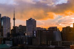 Toronto Skyline - CN Tower royalty free stock photos