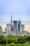 Toronto Skyline, Downtown with Cn Tower in the spring Stock Images