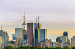 Toronto Skyline, Downtown with Cn Tower in the spring Royalty Free Stock Photography