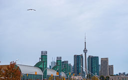 Toronto skyline at Exhibition Place Royalty Free Stock Photography