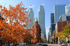 Toronto Skyline and Fall Colors royalty free stock images