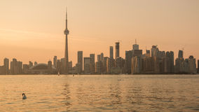 Toronto Skyline Late Afternoon Stock Photography