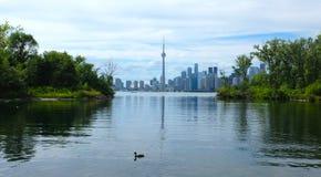 Toronto-Skyline in Ontario, Kanada Stockbilder