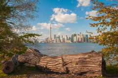 Toronto skyline with seasonal autumn trees Royalty Free Stock Photos