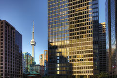 Toronto skyscrapers with CN tower in background Stock Images