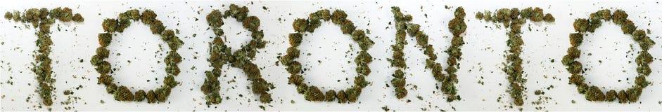 Toronto soletrou com marijuana Imagens de Stock Royalty Free