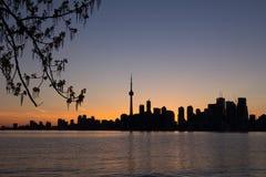 Toronto-Sonnenuntergang-Schattenbild mit Teil eines Baums auf dem links und der Co Lizenzfreies Stockfoto