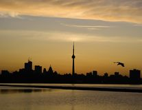 Toronto Sunrise. Sunrise over the Toronto Ontario skyline with CN Tower Stock Images