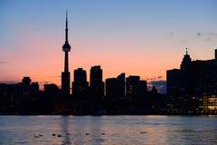 Toronto sylwetka Obrazy Royalty Free