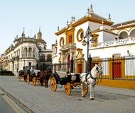 toros de plaza Σεβίλλη Στοκ Φωτογραφία