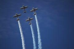 Toros del vuelo Foto de archivo