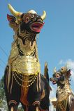 Toros para la ceremonia religiosa Imágenes de archivo libres de regalías