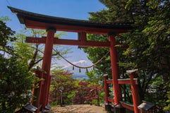 Toros rojos con el monte Fuji en el fondo en la pagoda de Chureito imágenes de archivo libres de regalías