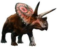 Torosaurus Royaltyfri Fotografi