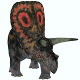 Torosaurus on White Royalty Free Stock Image