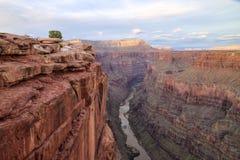 Toroweap punkt, Grand Canyonnationalpark Arkivfoton
