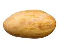 Torpedine del melone Fotografia Stock Libera da Diritti
