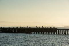 Torpedowerf bij zonsopgang in San Francisco stock foto