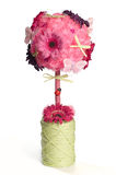 Torpiary floral cor-de-rosa sobre o fundo branco Imagem de Stock