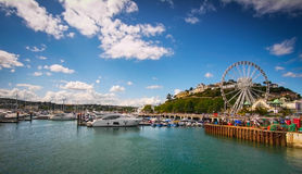Torquay marina Royaltyfria Foton