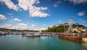 Torquayjachthaven royalty-vrije stock foto's