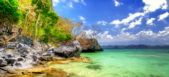 Torquoise tropics Royalty Free Stock Image