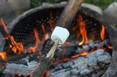 Torréfaction de guimauve sur un feu de camp Photographie stock libre de droits
