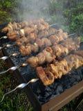 Torréfaction de viande sur un feu ouvert image libre de droits