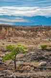 Torr öken och berg Arkivbild