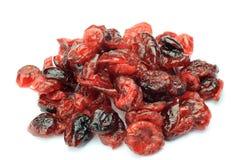 Torr cranberry royaltyfri fotografi