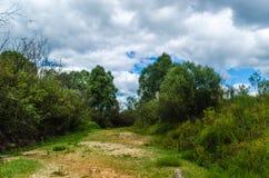 Torr flod på torka förtorkad jordning Ekologisk catastrophy fotografering för bildbyråer