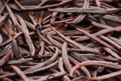 Torr frukt för vanilj royaltyfri foto