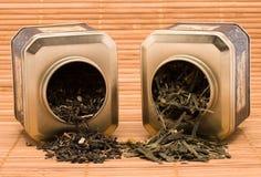 torr grön tea Arkivbild