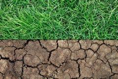 torr jord och grönt gräs arkivfoton