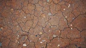 Torr jord, sprickor, texturbakgrund lager videofilmer