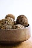 torr kokosnöt Arkivbilder