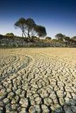torr lake Arkivbilder